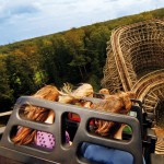 Movie-Park-Achterbahn-Presse